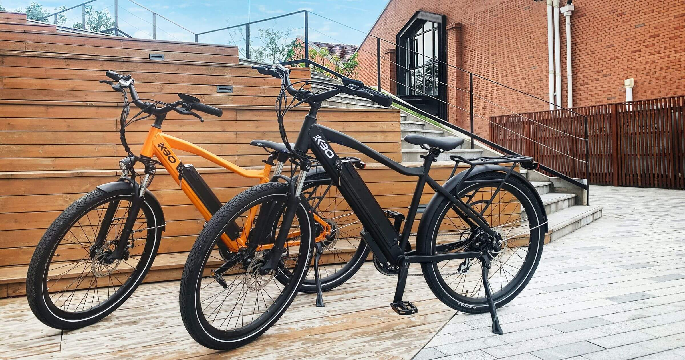 Market for Electric Bicycles in the European Union 2019-2020